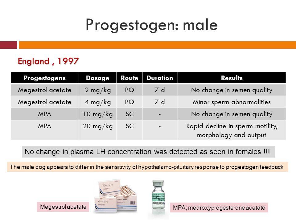 Progestogen: male England, 1997 ProgestogensDosageRouteDurationResults Megestrol acetate2 mg/kgPO7 dNo change in semen quality Megestrol acetate4 mg/k