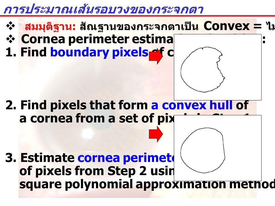  สมมุติฐาน : สัณฐานของกระจกตาเป็น Convex = ไม่มีส่วนที่เว้าเข้าไป  Cornea perimeter estimation algorithm: 1. Find boundary pixels of cornea. 2. Find