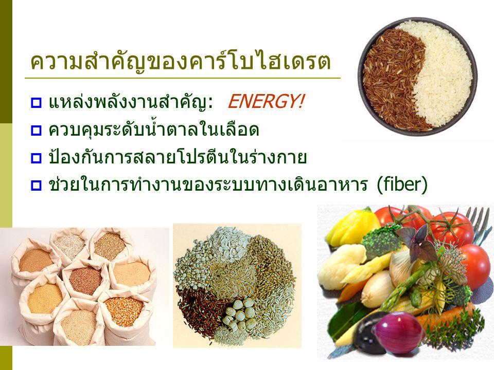 ความสำคัญของคาร์โบไฮเดรต  แหล่งพลังงานสำคัญ: ENERGY!  ควบคุมระดับน้ำตาลในเลือด  ป้องกันการสลายโปรตีนในร่างกาย  ช่วยในการทำงานของระบบทางเดินอาหาร (