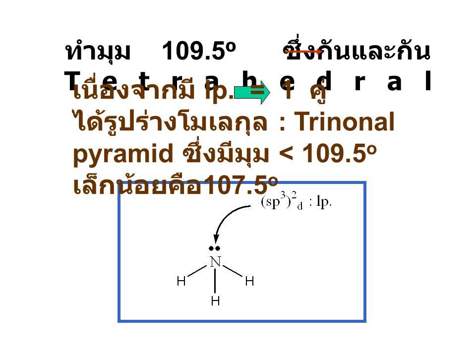 ทำมุม 109.5 o ซึ่งกันและกัน Tetrahedral เนื่องจากมี lp. = 1 คู่ ได้รูปร่างโมเลกุล : Trinonal pyramid ซึ่งมีมุม < 109.5 o เล็กน้อยคือ 107.5 o