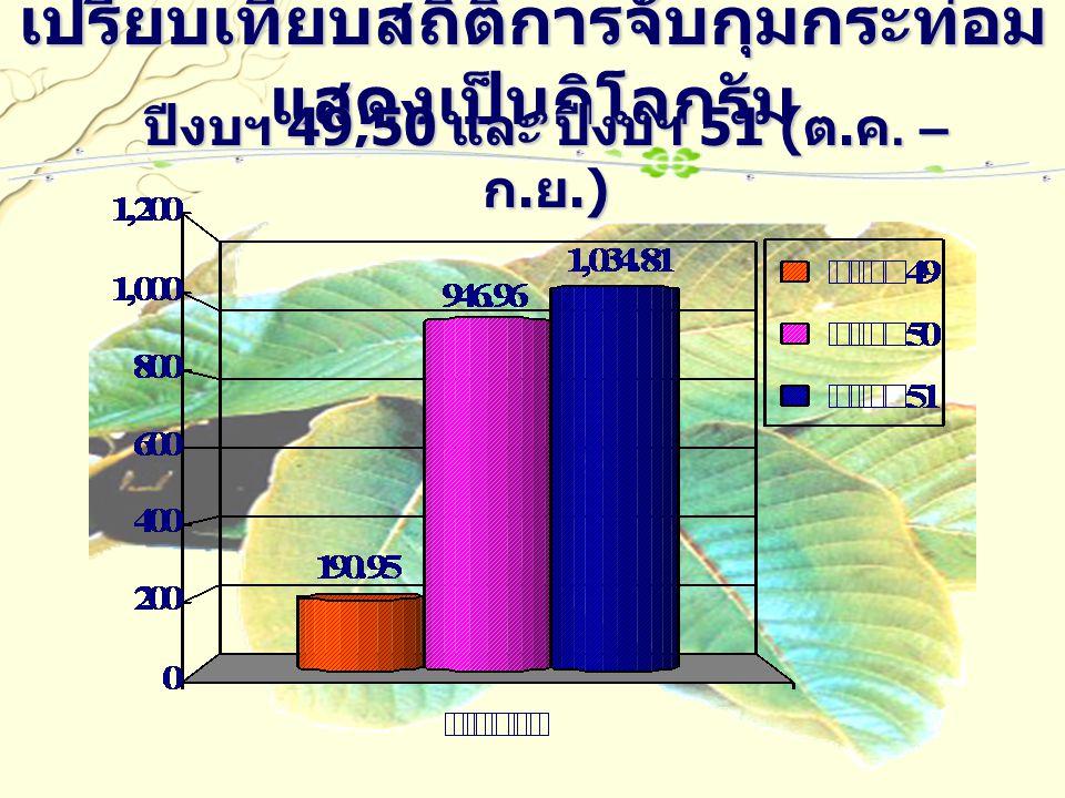 เปรียบเทียบสถิติการจับกุมกระท่อม แสดงเป็นกิโลกรัม ปีงบฯ 49,50 และ ปีงบฯ 51 ( ต. ค. – ก. ย.)