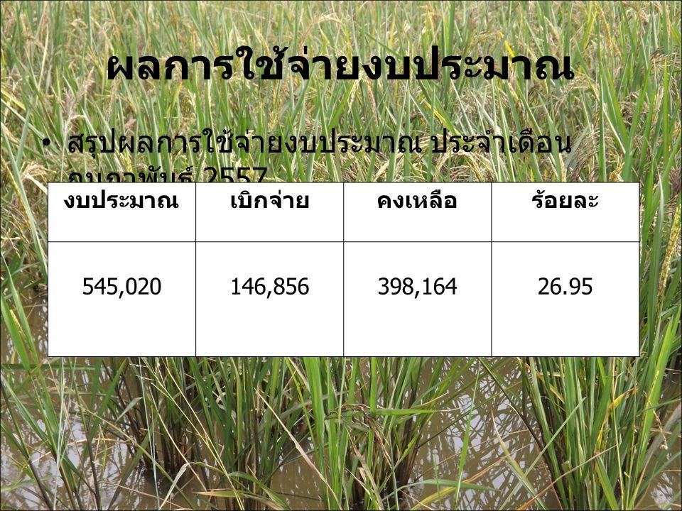 ผลการใช้จ่ายงบประมาณ สรุปผลการใช้จ่ายงบประมาณ ประจำเดือน กุมภาพันธ์ 2557 งบประมาณเบิกจ่ายคงเหลือร้อยละ 545,020146,856398,16426.95
