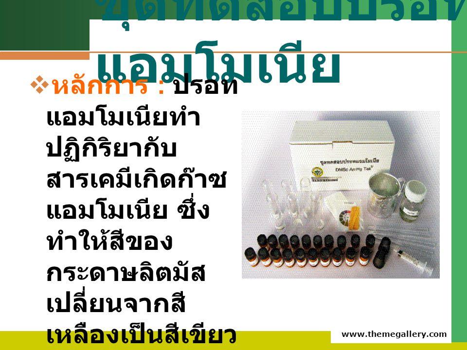 www.themegallery.com ชุดทดสอบปรอท แอมโมเนีย  หลักการ : ปรอท แอมโมเนียทำ ปฏิกิริยากับ สารเคมีเกิดก๊าซ แอมโมเนีย ซึ่ง ทำให้สีของ กระดาษลิตมัส เปลี่ยนจา