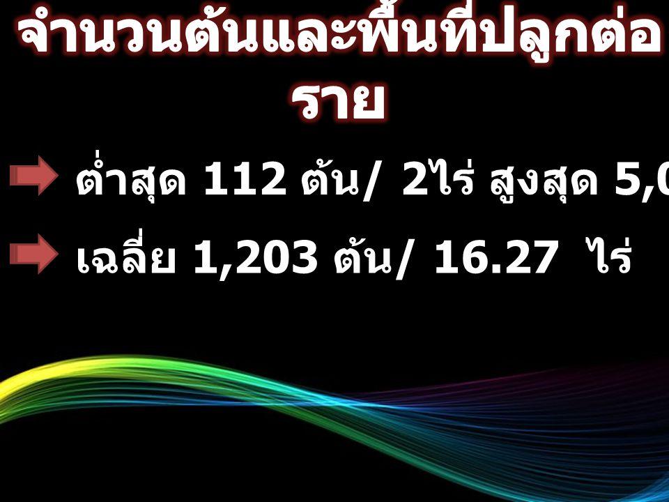 ต่ำสุด 112 ต้น / 2 ไร่ สูงสุด 5,000 ต้น / 66.7 ไร่ เฉลี่ย 1,203 ต้น / 16.27 ไร่