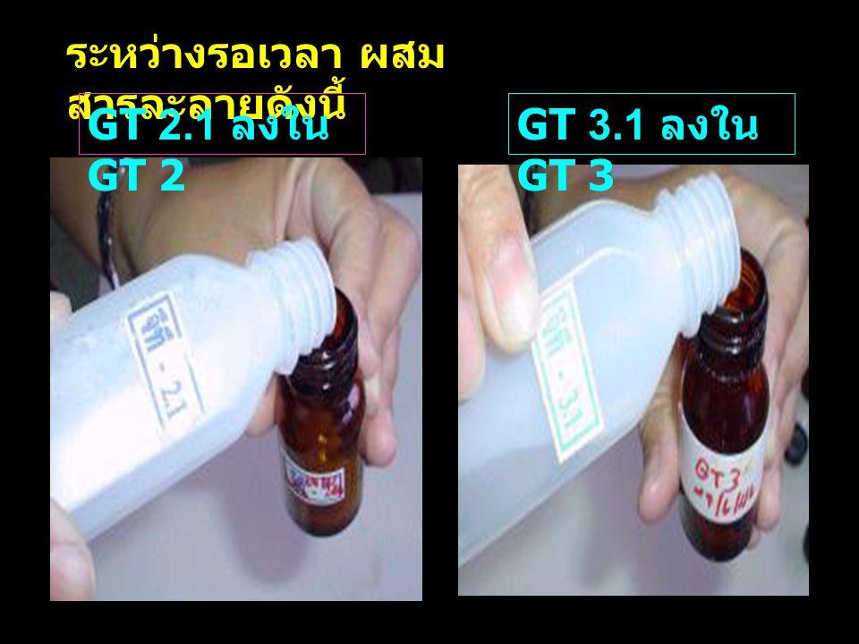 ระหว่างรอเวลา ผสม สารละลายดังนี้ GT 2.1 ลงใน GT 2 GT 3.1 ลงใน GT 3