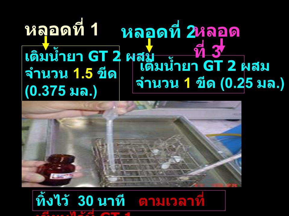 หลอดที่ 1 หลอดที่ 2 หลอด ที่ 3 เติมน้ำยา GT 2 ผสม จำนวน 1.5 ขีด (0.375 มล.) เติมน้ำยา GT 2 ผสม จำนวน 1 ขีด (0.25 มล.) ทิ้งไว้ 30 นาที ตามเวลาที่ เขียน