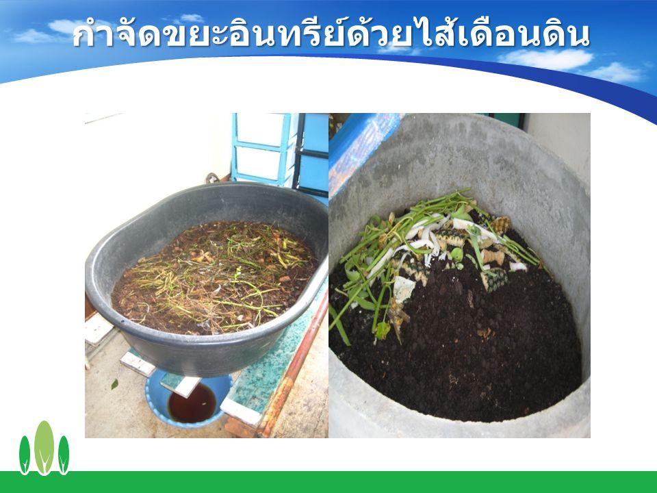 กำจัดขยะอินทรีย์ด้วยไส้เดือนดิน