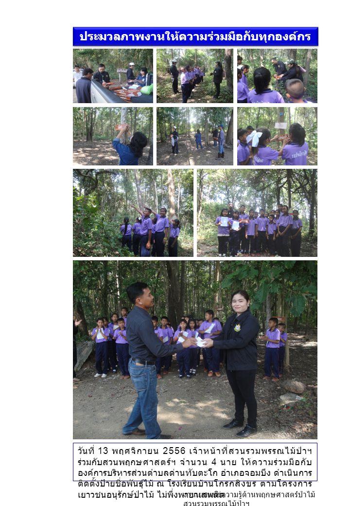 ประมวลภาพงานให้ความร่วมมือกับทุกองค์กร วันที่ 13 พฤศจิกายน 2556 เจ้าหน้าที่สวนรวมพรรณไม้ป่าฯ ร่วมกับสวนพฤกษศาสตร์ฯ จำนวน 4 นาย ให้ความร่วมมือกับ องค์การบริหารส่วนตำบลด่านทับตะโก อำเภอจอมบึง ดำเนินการ ติดตั้งป้ายชื่อพันธุ์ไม้ ณ โรงเรียนบ้านโกรกสิงขร ตามโครงการ เยาวชนอนุรักษ์ป่าไม้ ไม่พึ่งพายาเสพติด งานเผยแพร่ความรู้ด้านพฤกษศาสตร์ป่าไม้ สวนรวมพรรณไม้ป่าฯ