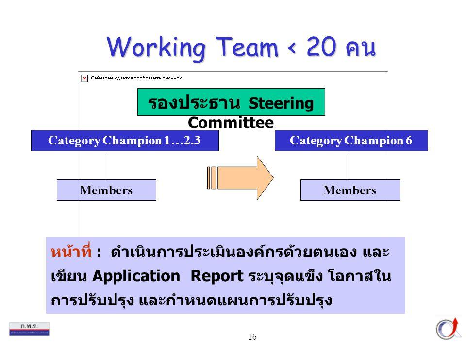 16 Working Team < 20 คน หน้าที่ : ดำเนินการประเมินองค์กรด้วยตนเอง และ เขียน Application Report ระบุจุดแข็ง โอกาสใน การปรับปรุง และกำหนดแผนการปรับปรุง Category Champion 1…2.3 Members Category Champion 6 Members รองประธาน Steering Committee