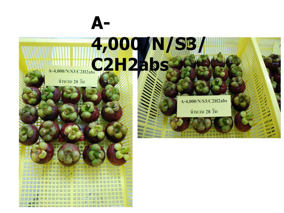 A- 4,000/Y/S3/ C2H2abs A- 4,000/N/S3/ C2H2abs