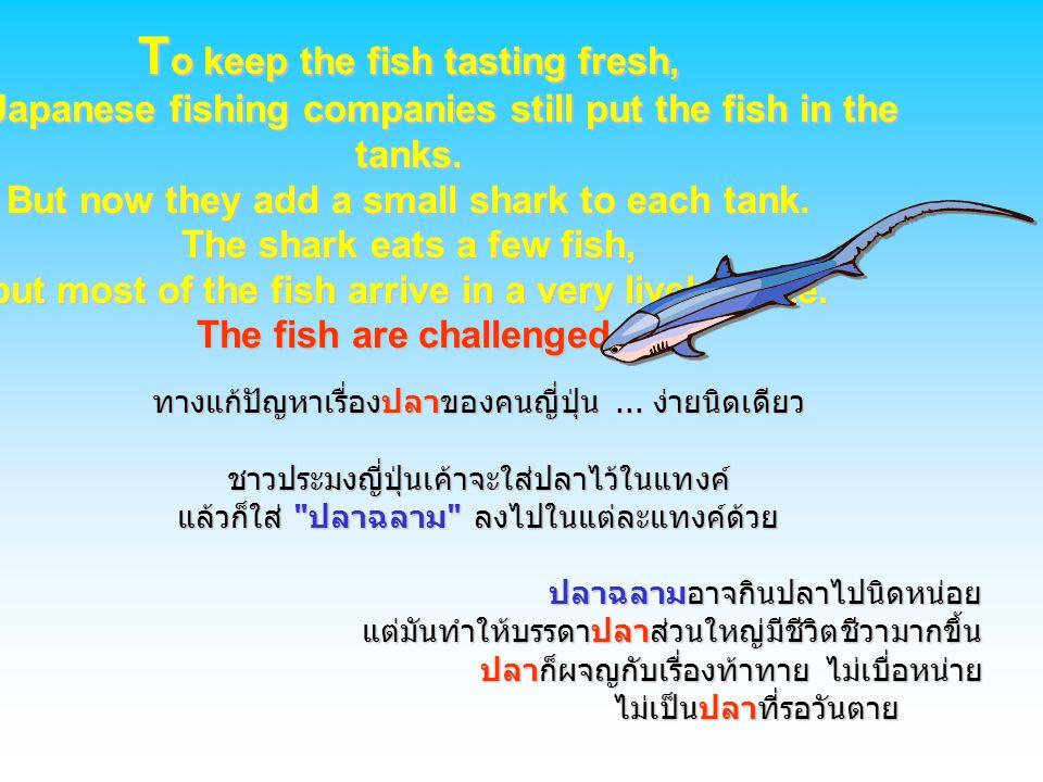 ทางแก้ปัญหาเรื่องปลาของคนญี่ปุ่น... ง่ายนิดเดียว ชาวประมงญี่ปุ่นเค้าจะใส่ปลาไว้ในแทงค์ แล้วก็ใส่