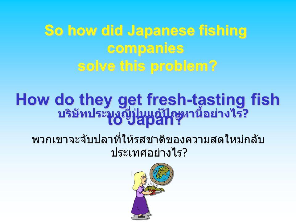 บริษัทประมงญี่ปุ่นแก้ปัญหานี้อย่างไร? บริษัทประมงญี่ปุ่นแก้ปัญหานี้อย่างไร? พวกเขาจะจับปลาที่ให้รสชาติของความสดใหม่กลับ ประเทศอย่างไร? So how did Japa