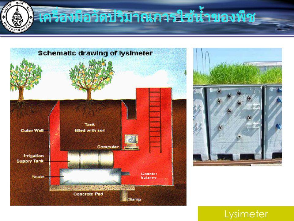 Lysimeter เครื่องมือวัดปริมาณการใช้น้ำของพืช