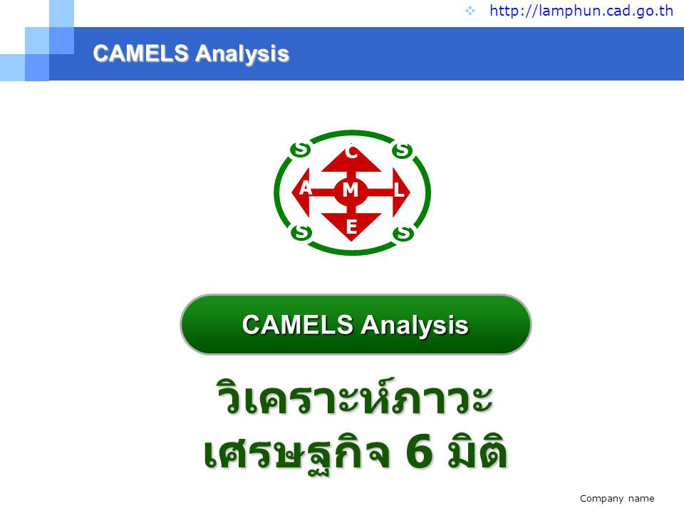 Company name www.themegallery.com CAMELS Analysis  http://lamphun.cad.go.th วิเคราะห์ภาวะ เศรษฐกิจ 6 มิติ S S S S C A E L M CAMELS Analysis