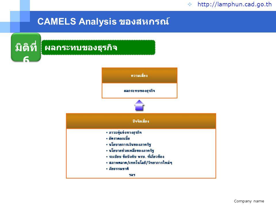 Company name www.themegallery.com CAMELS Analysis ของสหกรณ์  http://lamphun.cad.go.th มิติที่ 6 ผลกระทบของธุรกิจ