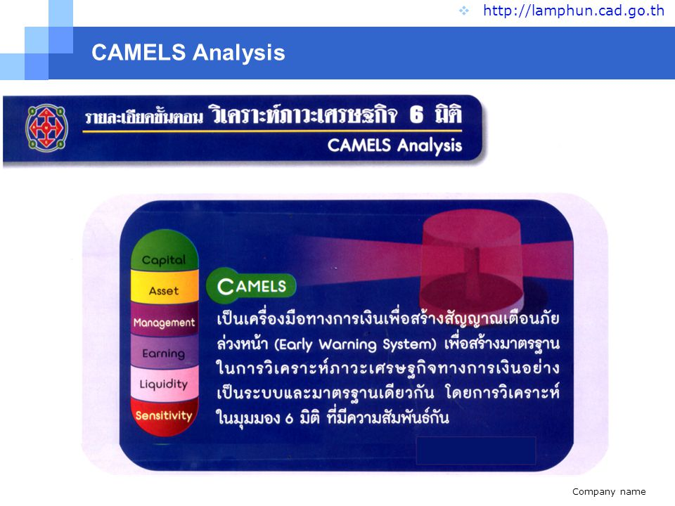 Company name www.themegallery.com CAMELS Analysis  http://lamphun.cad.go.th : Capital Strength ความเพียงพอของเงินทุนต่อความเสี่ยง C C : Asset quality คุณภาพของสินทรัพย์ A A : Management ability ขีดความสามารถในการบริหาร M M : Earning sufficience การทำกำไร E E : Liquidity สภาพคล่อง L L : Sensitivity ผลกระทบของธุรกิจ S S