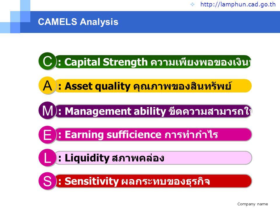 Company name www.themegallery.com CAMELS  http://lamphun.cad.go.th S S S S C A E L M ผลการวิเคราะห์ภาวะ เศรษฐกิจ 6 มิติ ของสหกรณ์ในจังหวัด ลำพูน