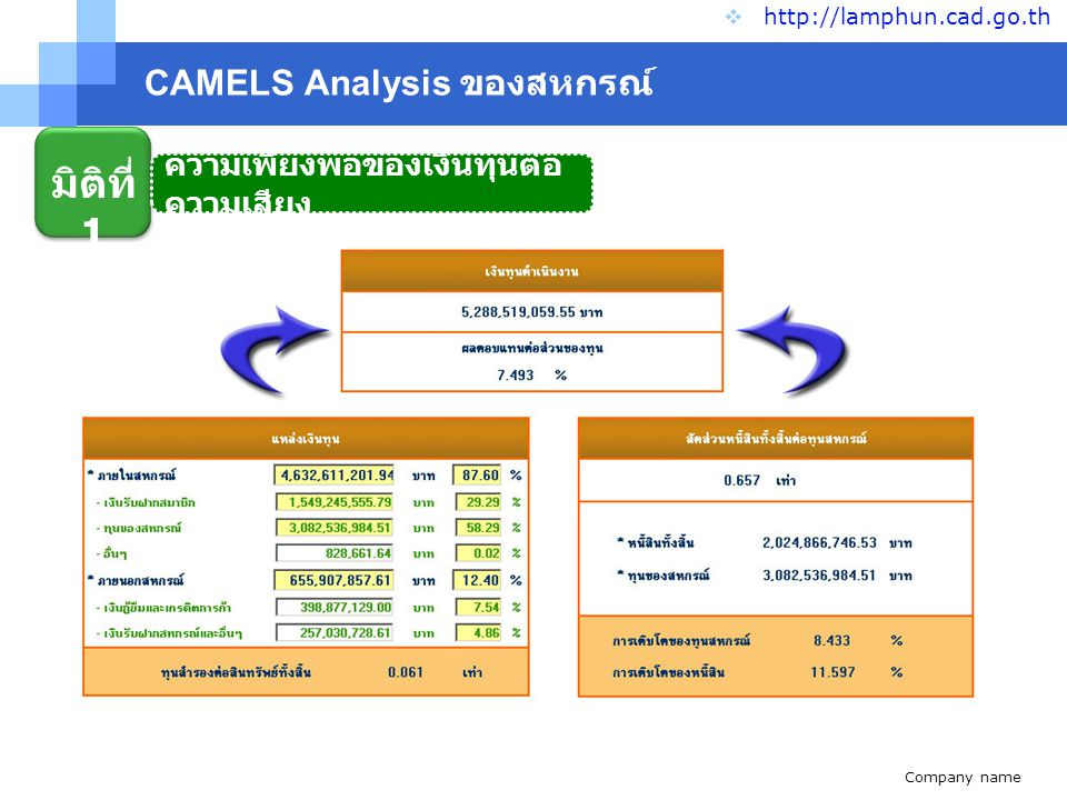 Company name www.themegallery.com CAMELS Analysis ของสหกรณ์  http://lamphun.cad.go.th มิติที่ 1 ความเพียงพอของเงินทุนต่อ ความเสียง