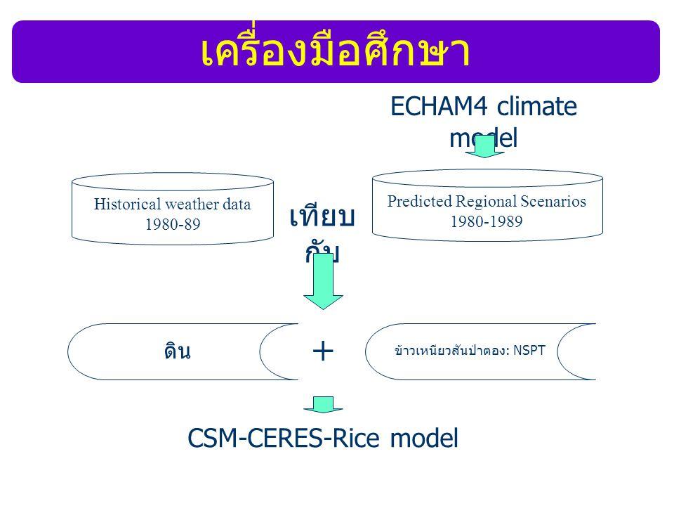 Historical weather data 1980-89 ดิน ข้าวเหนียวสันป่าตอง: NSPT Predicted Regional Scenarios 1980-1989 เทียบ กับ + CSM-CERES-Rice model ECHAM4 climate m