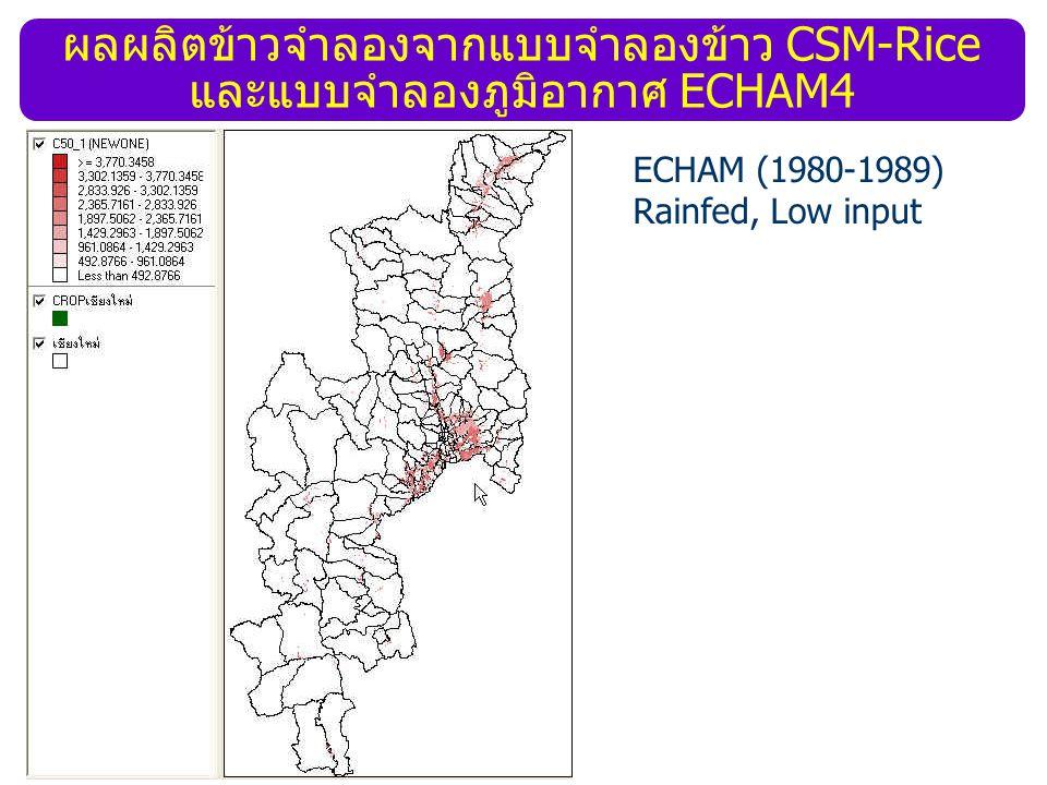 ผลผลิตข้าวจำลองจากแบบจำลองข้าว CSM-Rice และแบบจำลองภูมิอากาศ ECHAM4 ECHAM (1980-1989) Rainfed, Low input