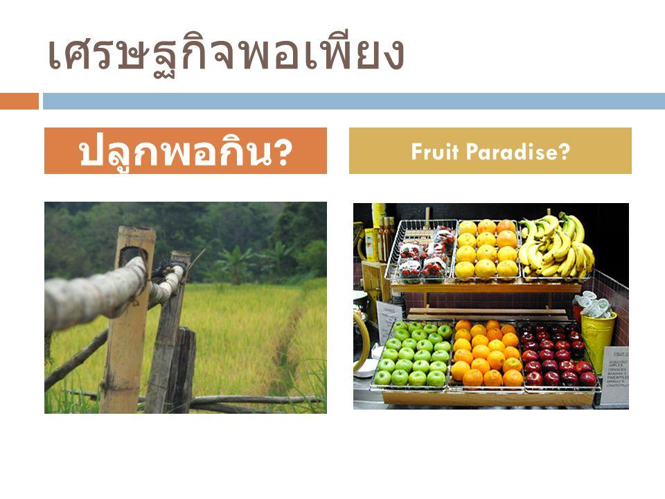เศรษฐกิจพอเพียง ปลูกพอกิน ? Fruit Paradise?