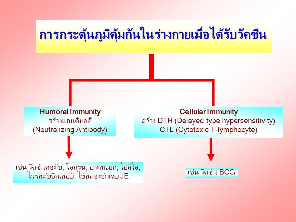 การกระตุ้นภูมิคุ้มกันในร่างกายเมื่อได้รับวัคซีน Humoral Immunity สร้างแอนติบอดี (Neutralizing Antibody) Cellular Immunity สร้าง DTH (Delayed type hype