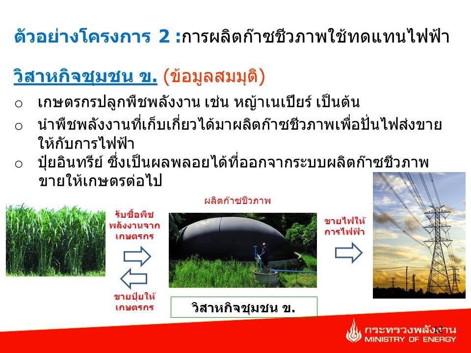 12 วิสาหกิจชุมชน ข. (ข้อมูลสมมุติ) o เกษตรกรปลูกพืชพลังงาน เช่น หญ้าเนเปียร์ เป็นต้น o นำพืชพลังงานที่เก็บเกี่ยวได้มาผลิตก๊าซชีวภาพเพื่อปั่นไฟส่งขาย ใ