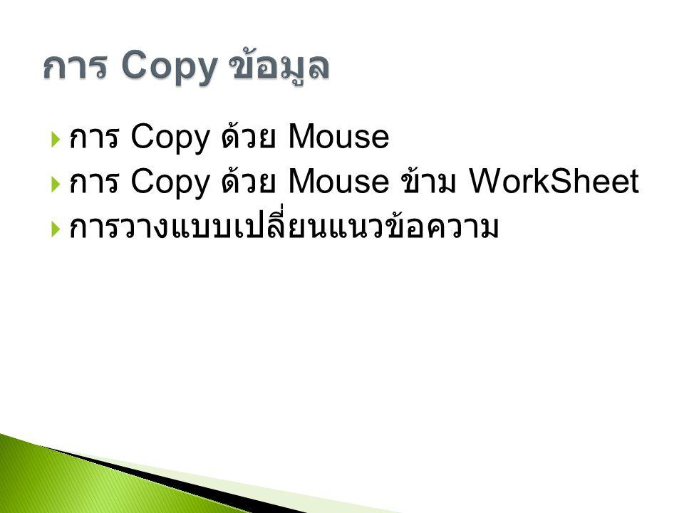  การ Copy ด้วย Mouse  การ Copy ด้วย Mouse ข้าม WorkSheet  การวางแบบเปลี่ยนแนวข้อความ
