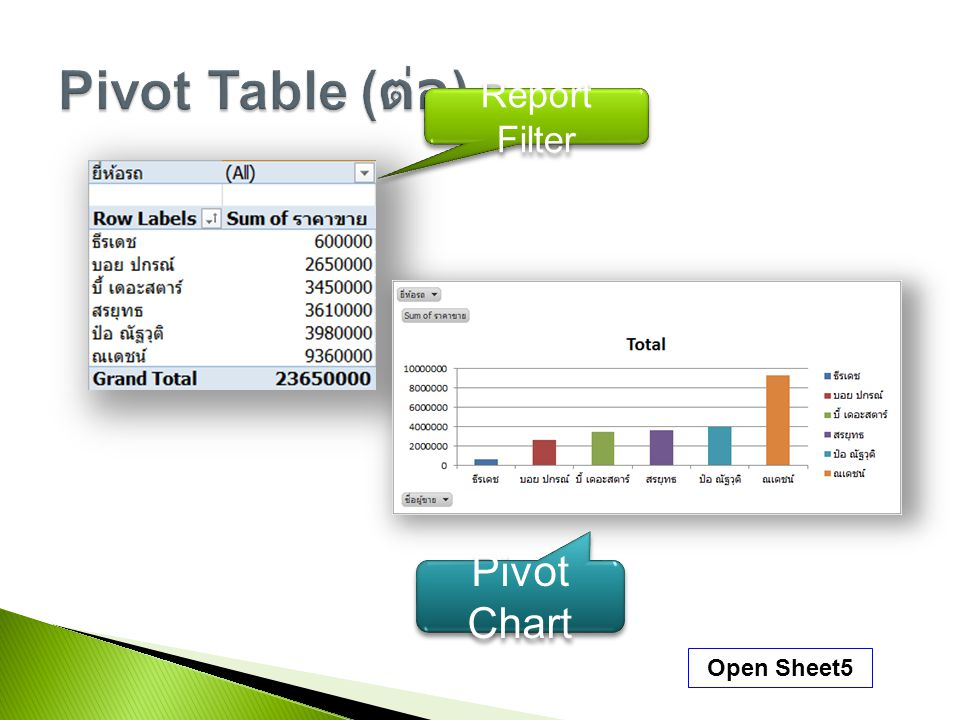 Open Sheet5 Report Filter Pivot Chart