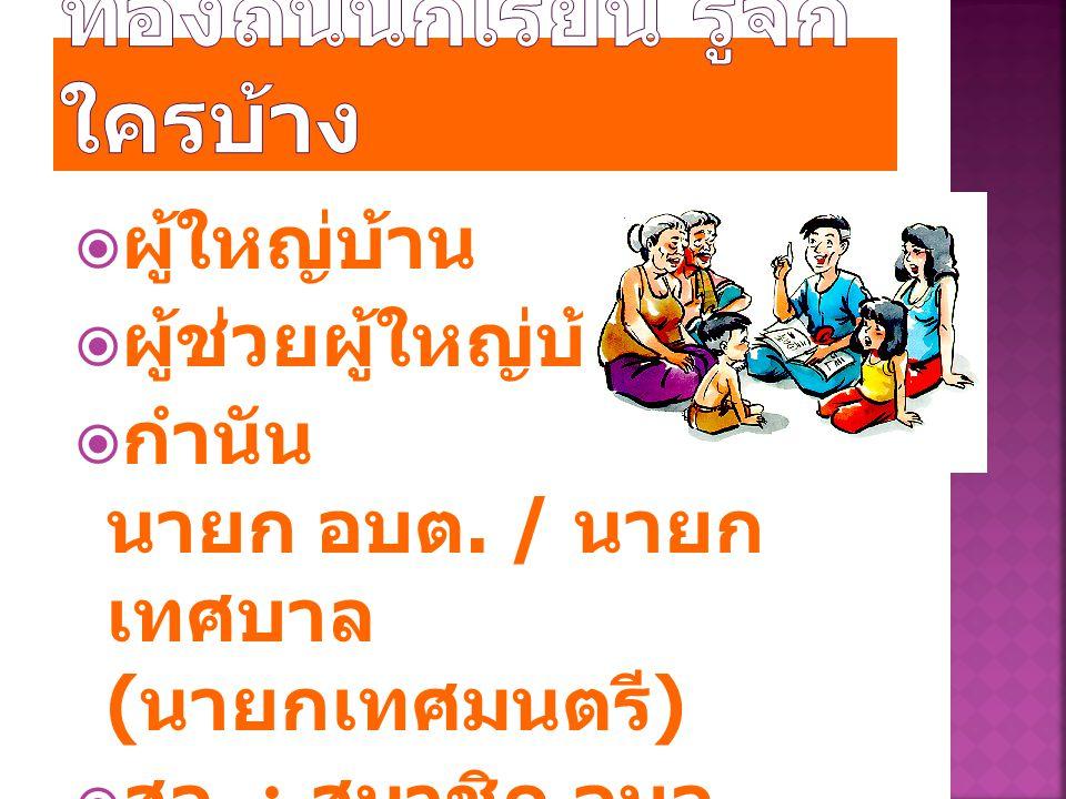  ผู้ใหญ่บ้าน  ผู้ช่วยผู้ใหญ่บ้าน  กำนัน นายก อบต. / นายก เทศบาล ( นายกเทศมนตรี )  สจ. : สมาชิก อบจ.