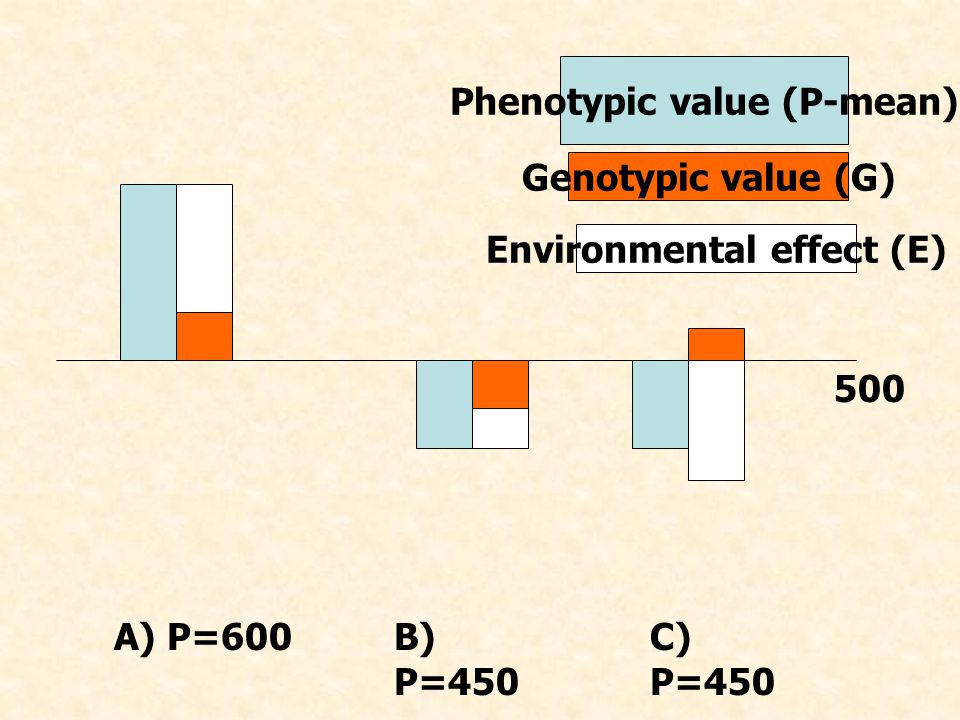 500 A) P=600B) P=450 C) P=450 Phenotypic value (P-mean) Genotypic value (G) Environmental effect (E)