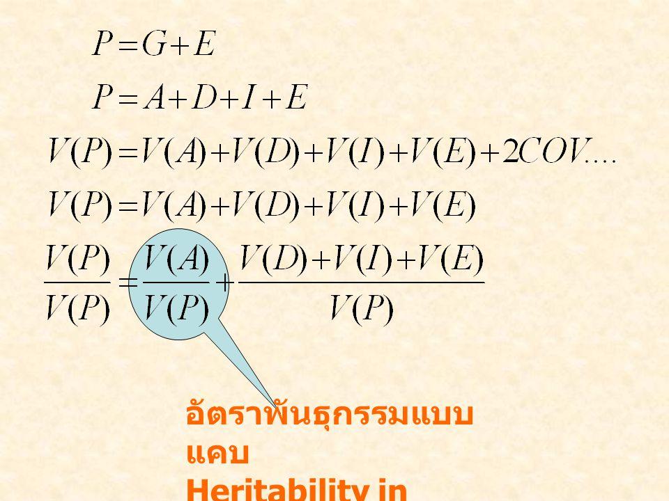 อัตราพันธุกรรมแบบ แคบ Heritability in narrow sense, h 2