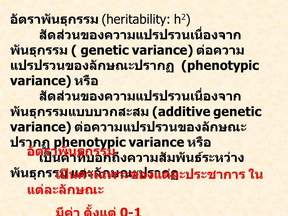 อัตราพันธุกรรม (heritability: h 2 ) สัดส่วนของความแปรปรวนเนื่องจาก พันธุกรรม ( genetic variance) ต่อความ แปรปรวนของลักษณะปรากฏ (phenotypic variance) หรือ สัดส่วนของความแปรปรวนเนื่องจาก พันธุกรรมแบบบวกสะสม (additive genetic variance) ต่อความแปรปรวนของลักษณะ ปรากฏ phenotypic variance หรือ เป็นค่าที่บอกถึงความสัมพันธ์ระหว่าง พันธุกรรม และลักษณะปรากฏ อัตราพันธุกรรม เป็นค่าเฉพาะของแต่ละประชาการ ใน แต่ละลักษณะ มีค่า ตั้งแต่ 0-1