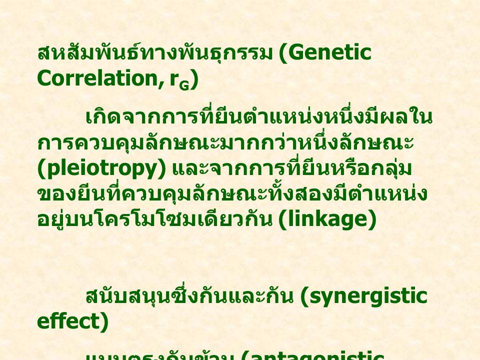 สหสัมพันธ์ทางพันธุกรรม (Genetic Correlation, r G ) เกิดจากการที่ยีนตำแหน่งหนึ่งมีผลใน การควบคุมลักษณะมากกว่าหนึ่งลักษณะ (pleiotropy) และจากการที่ยีนหรือกลุ่ม ของยีนที่ควบคุมลักษณะทั้งสองมีตำแหน่ง อยู่บนโครโมโซมเดียวกัน (linkage) สนับสนุนซึ่งกันและกัน (synergistic effect) แบบตรงกันข้าม (antagonistic effect)
