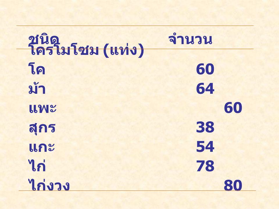 ชนิดจำนวน โครโมโซม ( แท่ง ) โค 60 ม้า 64 แพะ 60 สุกร 38 แกะ 54 ไก่ 78 ไก่งวง 80