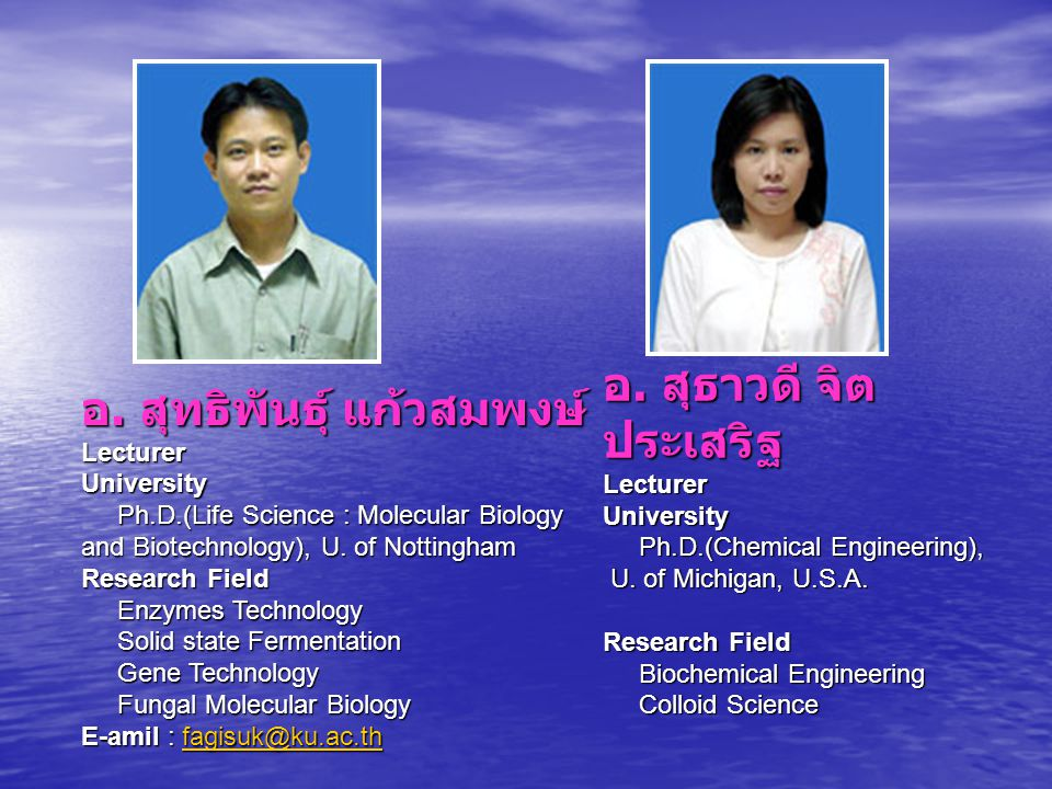 อ. สุทธิพันธุ์ แก้วสมพงษ์ Lecturer University Ph.D.(Life Science : Molecular Biology and Biotechnology), U. of Nottingham Research Field Enzymes Techn