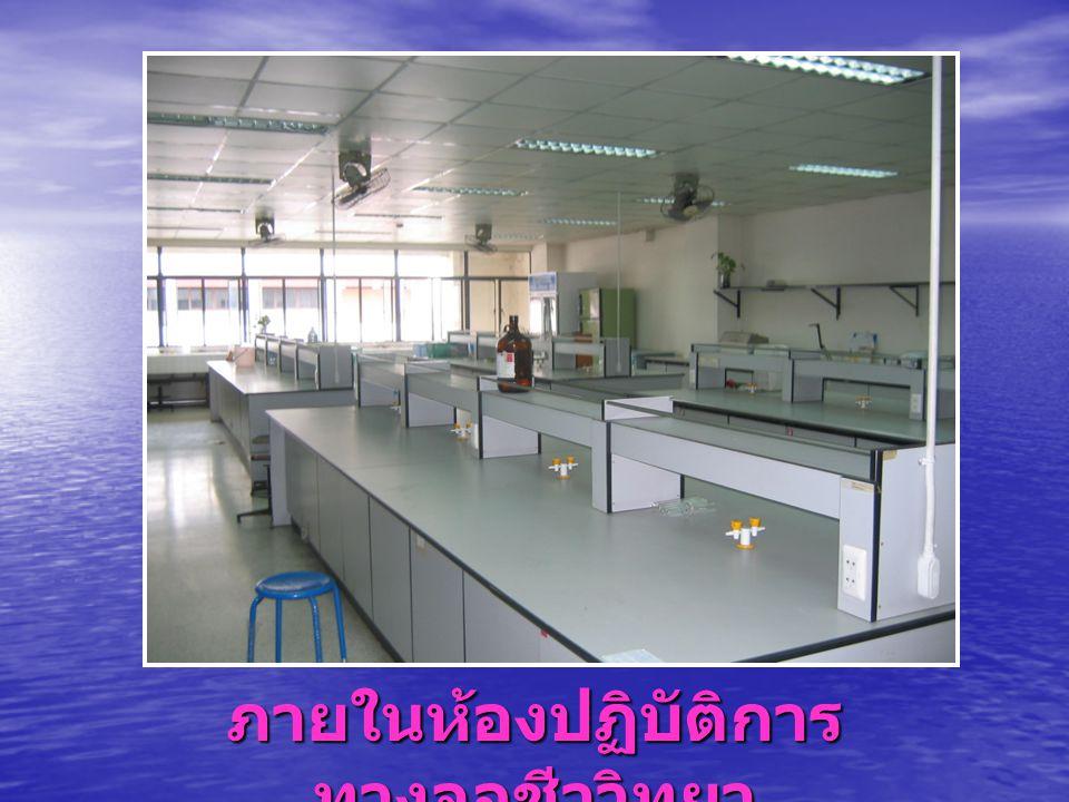 ภายในห้องปฏิบัติการ ทางจุลชีววิทยา