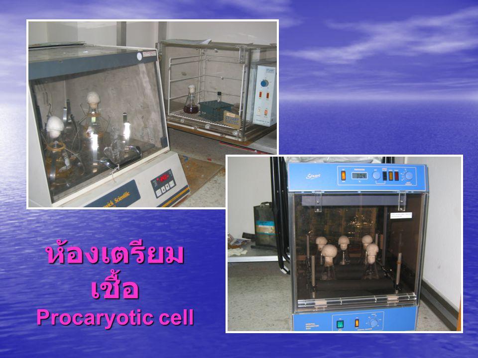 ห้องเตรียม เชื้อ Procaryotic cell