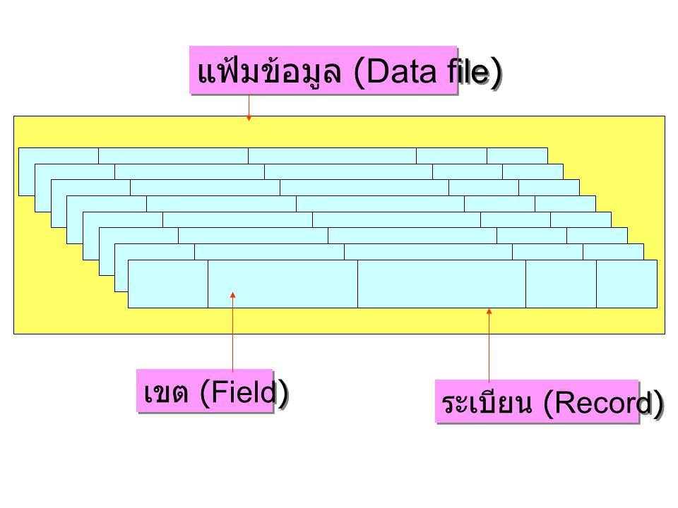 แฟ้มข้อมูล (Data file) ระเบียน (Record) เขต (Field)