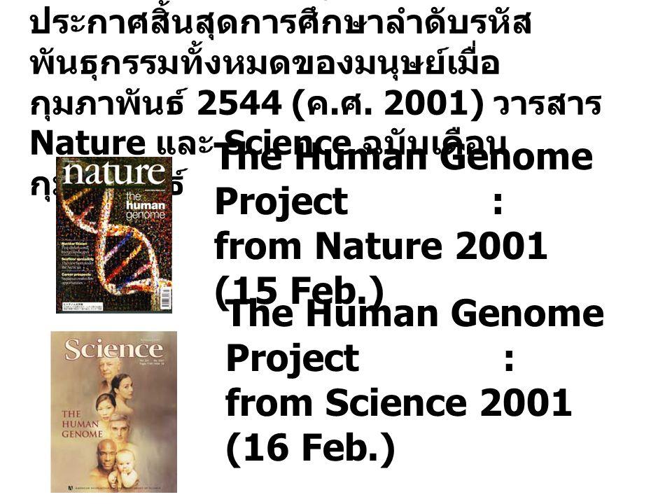 โครงการจีโนมมนุษย์ได้รับการ ประกาศสิ้นสุดการศึกษาลำดับรหัส พันธุกรรมทั้งหมดของมนุษย์เมื่อ กุมภาพันธ์ 2544 ( ค. ศ. 2001) วารสาร Nature และ Science ฉบับ