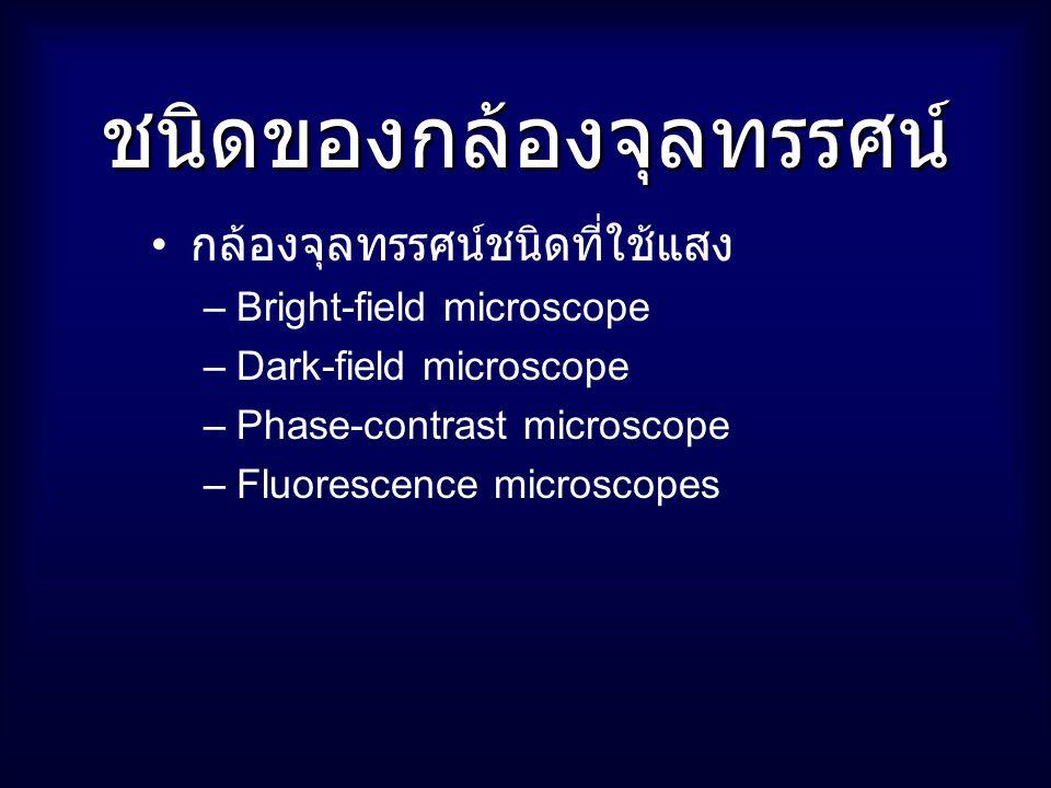 ชนิดของกล้องจุลทรรศน์ กล้องจุลทรรศน์ชนิดที่ใช้แสง –Bright-field microscope –Dark-field microscope –Phase-contrast microscope –Fluorescence microscopes