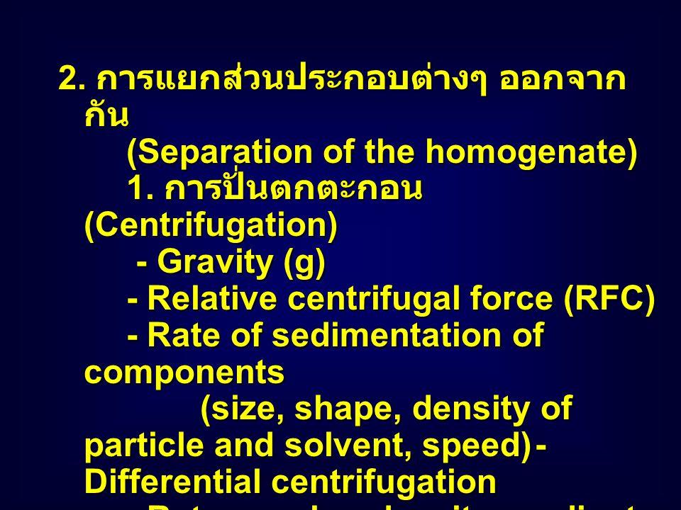 Gel Filtration http://fig.cox.miami.edu/~cmallery/150/pr otein/proteinsb.htm