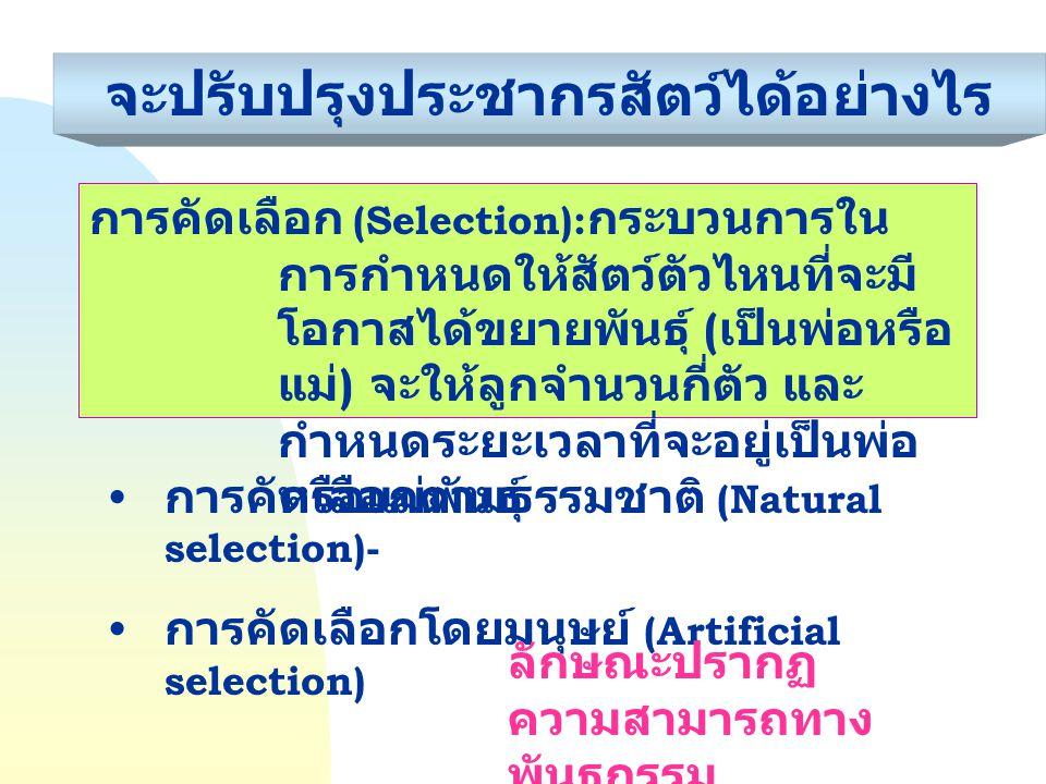 จะปรับปรุงประชากรสัตว์ได้อย่างไร การคัดเลือกตามธรรมชาติ (Natural selection)- การคัดเลือกโดยมนุษย์ (Artificial selection) การคัดเลือก (Selection): กระบ