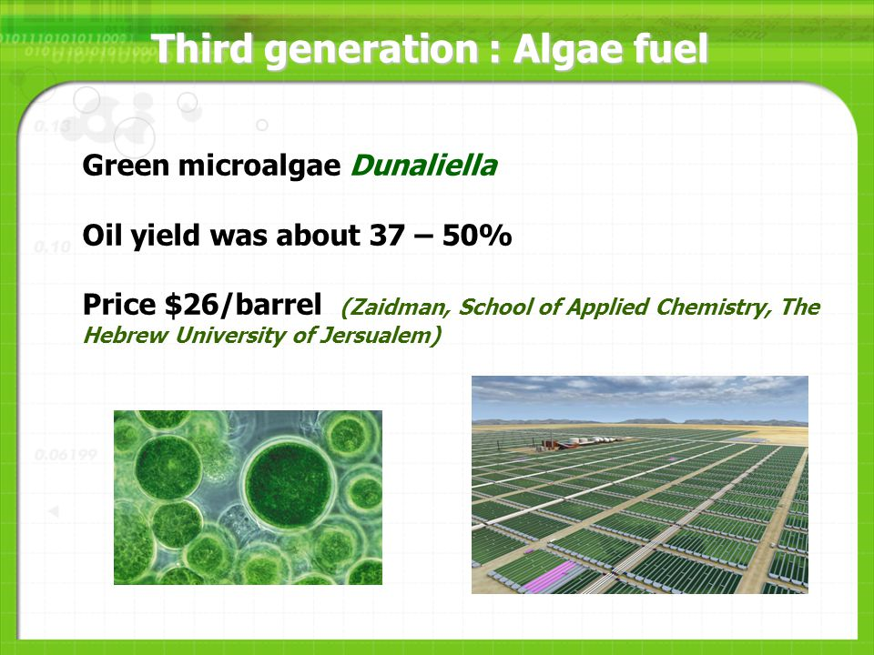 Third generation : Algae fuel Green microalgae Dunaliella Oil yield was about 37 – 50% Price $26/barrel (Zaidman, School of Applied Chemistry, The Hebrew University of Jersualem)