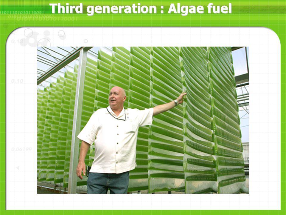 Third generation : Algae fuel