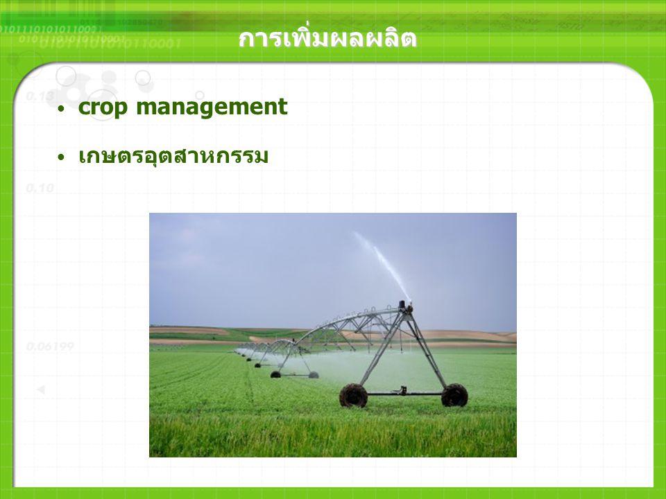 การเพิ่มผลผลิต การเพิ่มผลผลิตโดยวิธีธรรมชาติและเทคโนโลยีชีวภาพ ทนต่อโรคและแมลง สภาพกดดันทางธรรมชาติ ภัยแล้งและความเค็มของดิน การใช้เอนไซม์ในการผลิตส่วนประกอบและการแปรรูป อาหาร