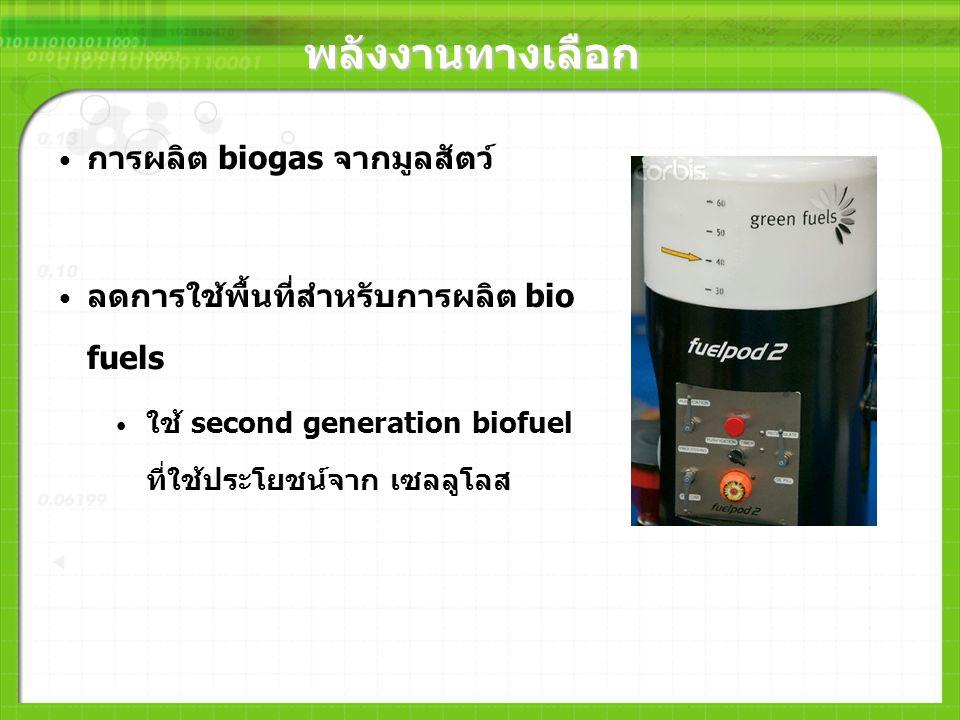 พลังงานทางเลือก การผลิต biogas จากมูลสัตว์ ลดการใช้พื้นที่สำหรับการผลิต bio fuels ใช้ second generation biofuel ที่ใช้ประโยชน์จาก เซลลูโลส