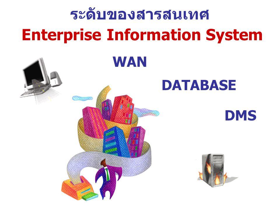 ระดับของสารสนเทศ Enterprise Information System WAN DATABASE DMS