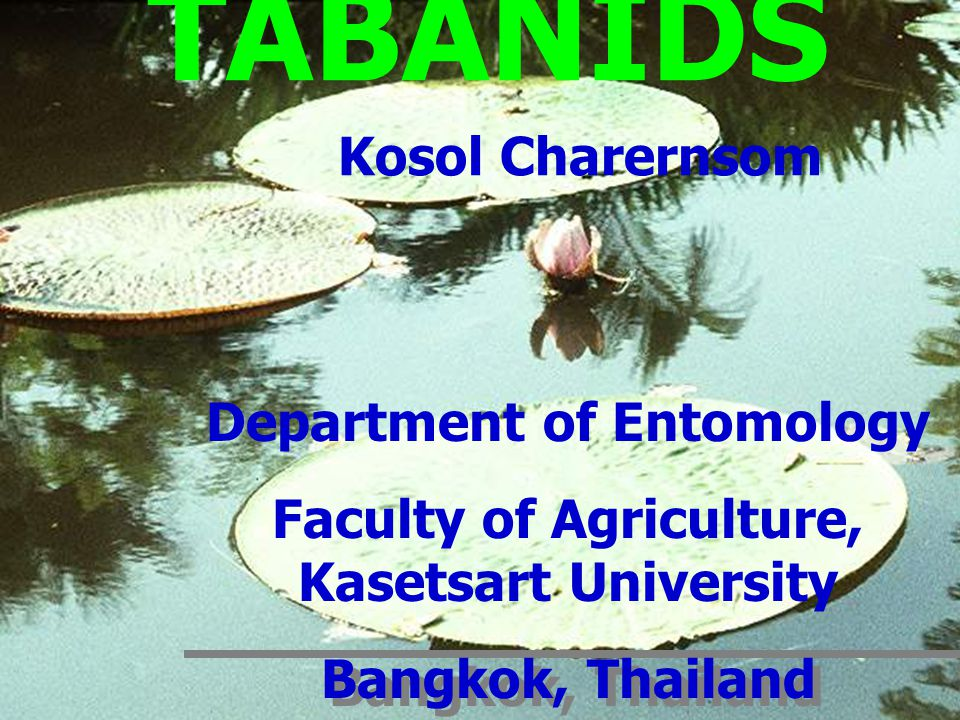 Department of Entomology Faculty of Agriculture, Kasetsart University Bangkok, Thailand Department of Entomology Faculty of Agriculture, Kasetsart Uni