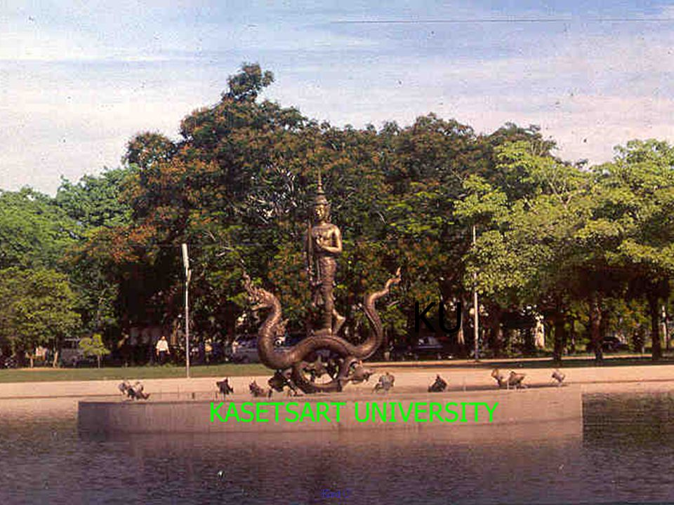 KASETSART UNIVERSITY KU